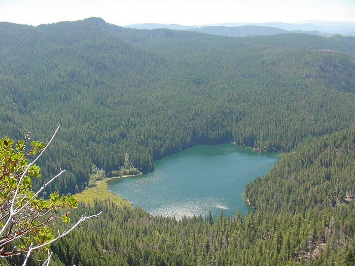 A small blue lake surrounded by a thick forest sits cradled deep within the mountains.